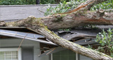 Storm roof damage repair in Aurora